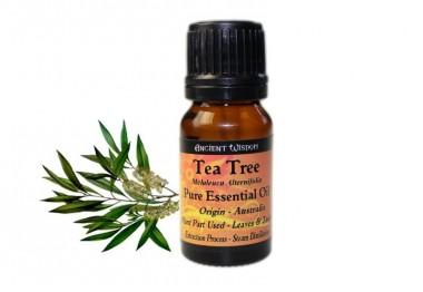 Huiles essentielles tea tree - Huile arbre a the ...